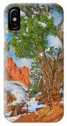 The Ferruginous Earth Of The Rocky Mountain West IPhone Case