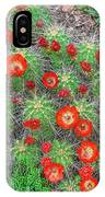 The First Week Of May, Claret Cup Cacti Begin To Bloom Throughout The Colorado Rockies.  IPhone Case