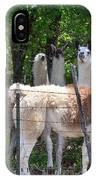 The Five Llamas IPhone Case