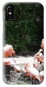 The Flamingos IPhone Case