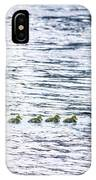 The Goose Family IPhone Case