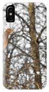 The Graceful Mourning Dove In-flight IPhone Case