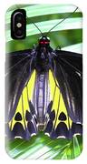 The Largest Butterfly In The World IPhone Case