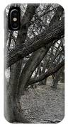 The Leaning Boughs IPhone Case