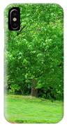 The Leaning Tree IPhone Case