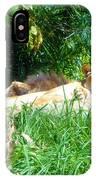The Lion Awakes IPhone Case