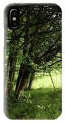 The Meeting Of Two Worlds IPhone Case