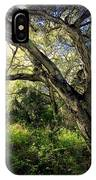 The Mighty Oaks Of Garland Ranch Park 1 IPhone Case