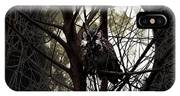 The Night Owl And Harvest Moon IPhone Case