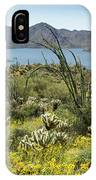 The Ocotillo View IPhone Case