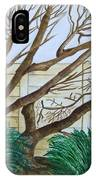 The Old Apricot Tree IPhone Case