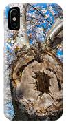 The Old Cherry Tree IPhone Case