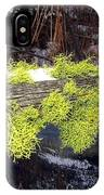 The Old Mossy Flume IPhone Case