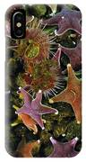 The Parade Of Stars IPhone Case