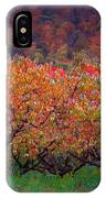 The Peach Orchard IPhone Case