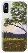 The Picnic Spot IPhone Case