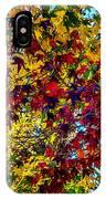 The Rainbow Tree IPhone Case