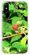 The Rasberry Patch IPhone Case