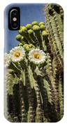 The Saguaro Cactus  IPhone Case