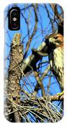 The Search Red Tail Hawk Art IPhone Case