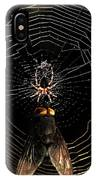 The Spider  And The Fly IPhone Case