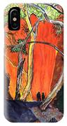 The Standley Chasm IPhone Case