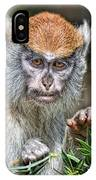 The Stare A Baby Patas Monkey  IPhone Case