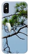 The Stoic Egret - Debbie May IPhone Case