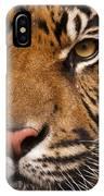 The Sumatran Tiger Cat IPhone Case
