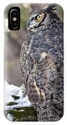 The Tiger Of The Sky IPhone Case