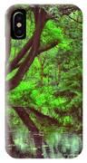 The Water Margins - Nutclough Woods IPhone Case