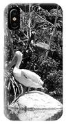 The Waterbirds IPhone Case