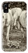 The Wild Horses Of Shannon County Mo 7r2_dsc1111_16-09-23 IPhone Case