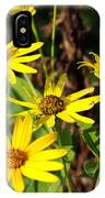 Thin-leaved Sunflower IPhone Case