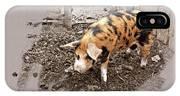 This Little Piggy IPhone Case
