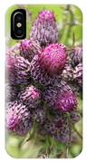 Thistle Do 2 IPhone Case