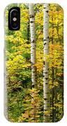 Three Birch IPhone Case