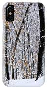Three Creeks Conservation Area - Winter IPhone Case