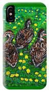 Three Ducklings IPhone Case