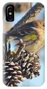 Three Pine Cones And A Little Bird IPhone Case