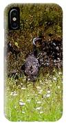 Three Turkeys IPhone Case
