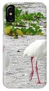 Three White Ibis Walking On The Beach IPhone Case