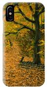 Through The Fallen Leaves IPhone Case