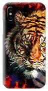 Through The Ring Of Fire IPhone Case