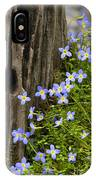 Thyme-leaved Bluets - D008426 IPhone Case