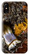 Tidal Abstract IPhone Case