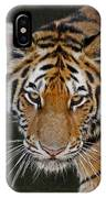 Tiger Hunting IPhone Case