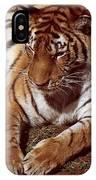 Tiger I IPhone Case