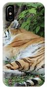 Tiger- Lincoln Park Zoo IPhone Case