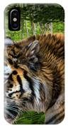 Tiger On The Prowl IPhone Case